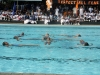 Swimming Meet 2012